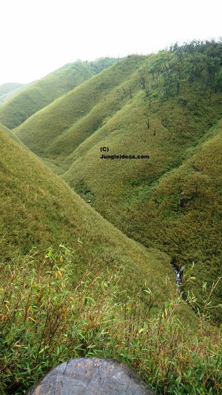 Dzukou Valley, Japfu Peak , Nagaland Trekking, North East India Trekking