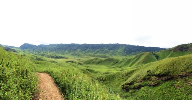 Dzukou Valley trekking, Nagaland tourism, North East India Trekking, Japfu